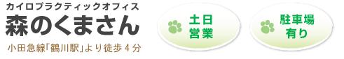 町田鶴川で妊婦さん、ご高齢の方に人気の整体をお探しならカイロプラクティックオフィス森のくまさんへ!